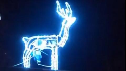 Immagini Che Si Muovono Di Natale.Si Accendono Le Luci Di Natale A Montelabbate La Renna Che